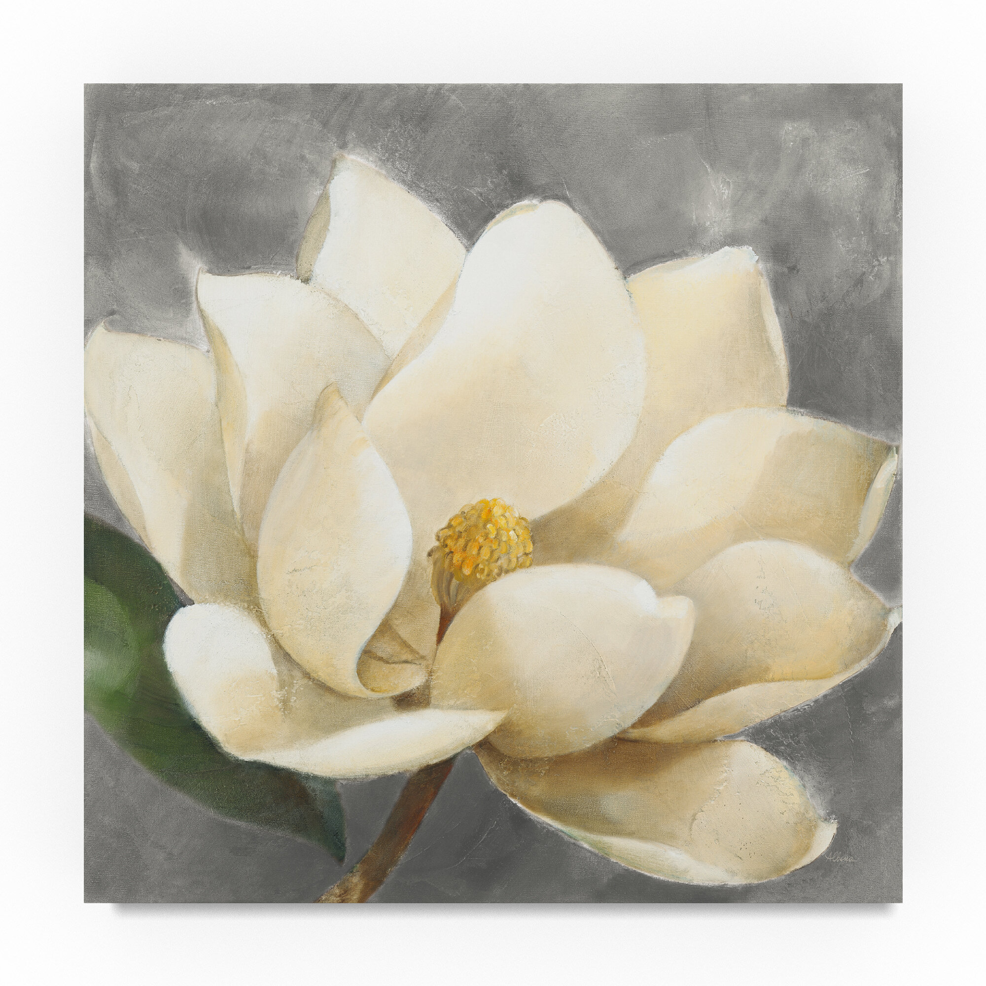 Trademark Art Magnolia Blossom On Grey Acrylic Painting Print On
