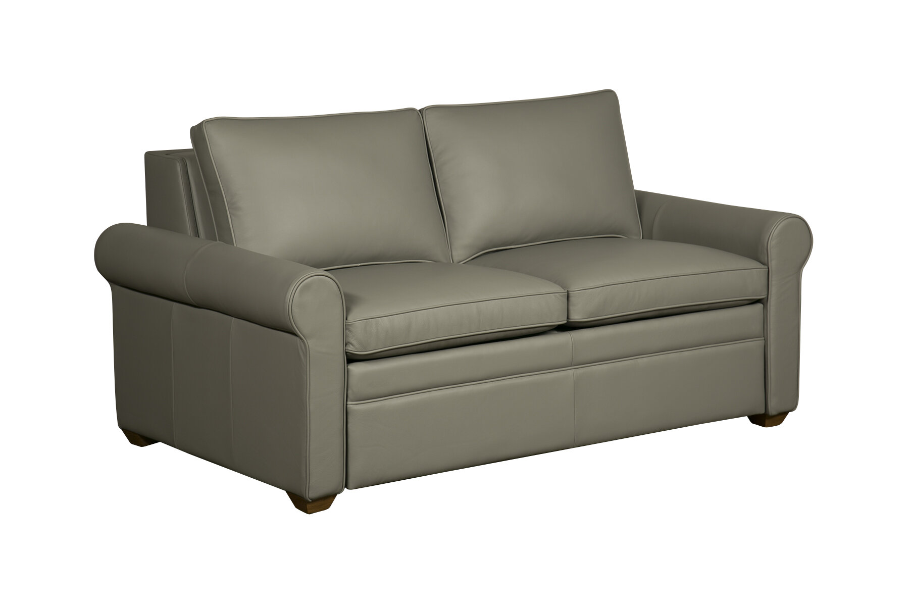Westland And Birch Kipling Leather Sleeper Sofa | Wayfair