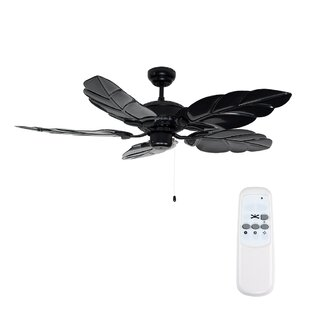 Ceiling fans youll love buy online wayfair 132cm florida 5 blade ceiling fan with remote control aloadofball Choice Image