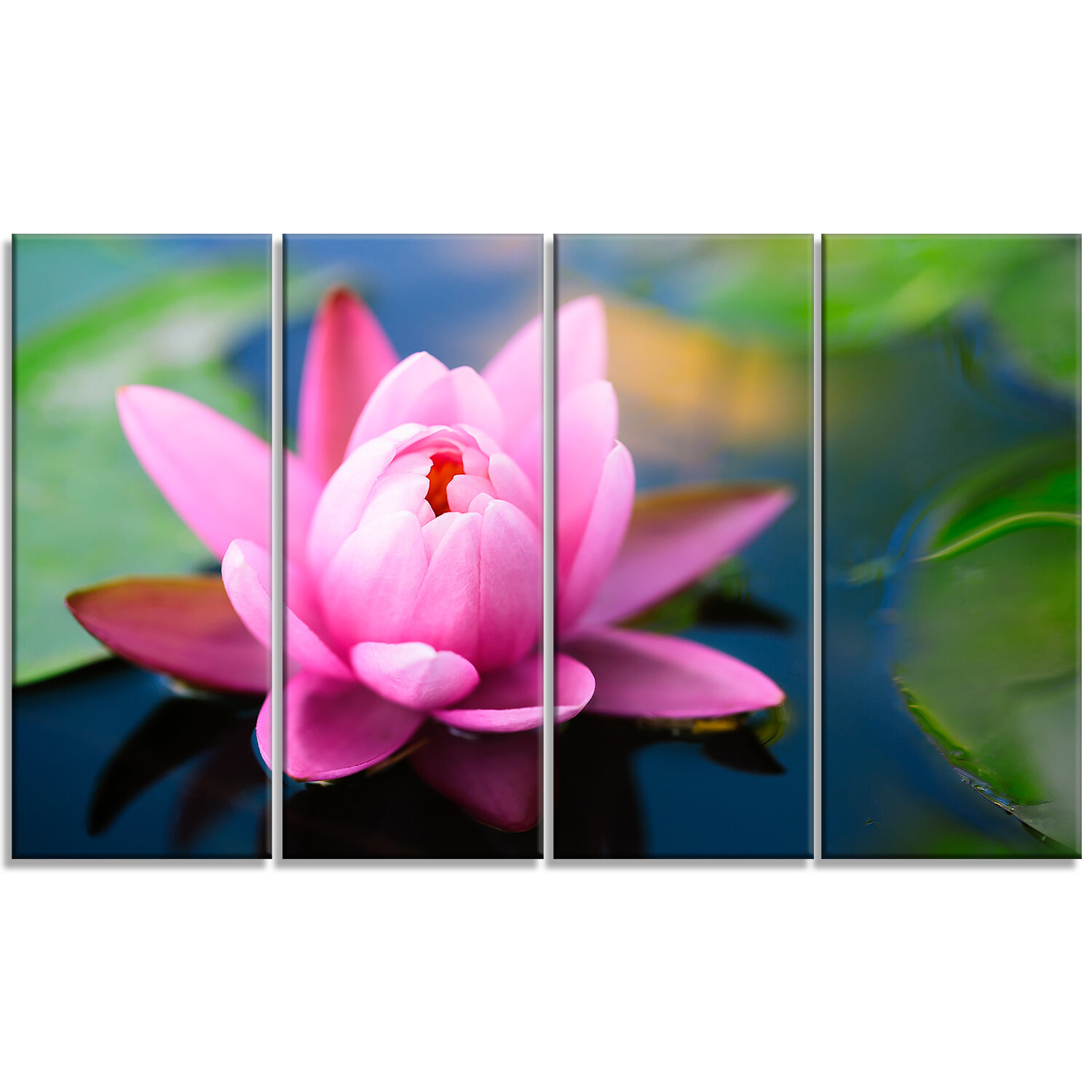 Designart Large Lotus Flower In The Pond 4 Piece Photographic