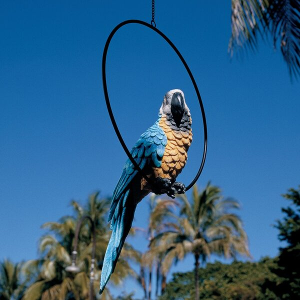 Design Toscano Polly In Paradise Parrot Statue Amp Reviews