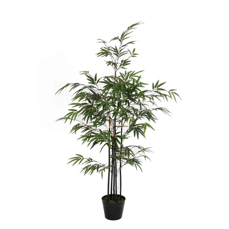 Sfeer Voor Jou Boden Kunstbaum Bambus Im Topf Wayfair De