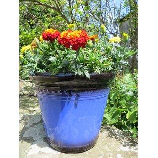 Portage Plant Pot by Lynton Garden