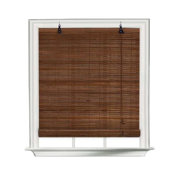 Blinds & Window Shades