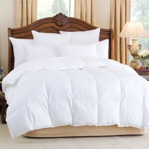 andesia 650 fill power midweight goose down comforter
