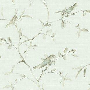Wallpaper With Birds Wayfair Ca