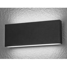 Iasos 2-Light Outdoor Flush Mount