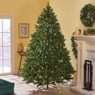 75 green spruce artificial christmas tree with 750 clear lights - Indoor Decorative Christmas Trees