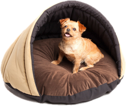 Dog Beds You Ll Love Wayfair