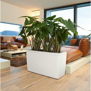 White Planter Pots You Ll Love Wayfair