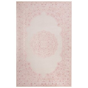 Fontanne Machine Woven Chenille Ivory Baby Pink Area Rug