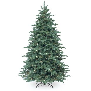 Blue Spruce Christmas Tree | Wayfair