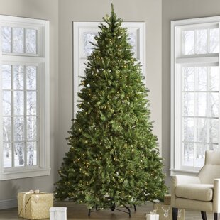 hinged fir trees 9 green fir trees artificial christmas tree with 900 clearwhite lights lights - Pre Decorated Christmas Trees