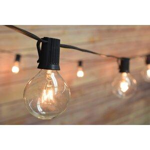 50-Light 51 ft. Globe String Light
