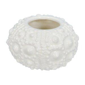 Amit Sea Urchin Vase (Set of 2)