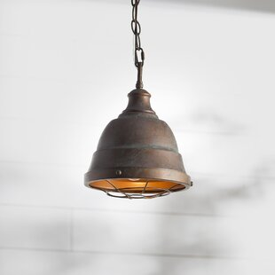 Copper Pendant Lights Youu0027ll Love | Wayfair