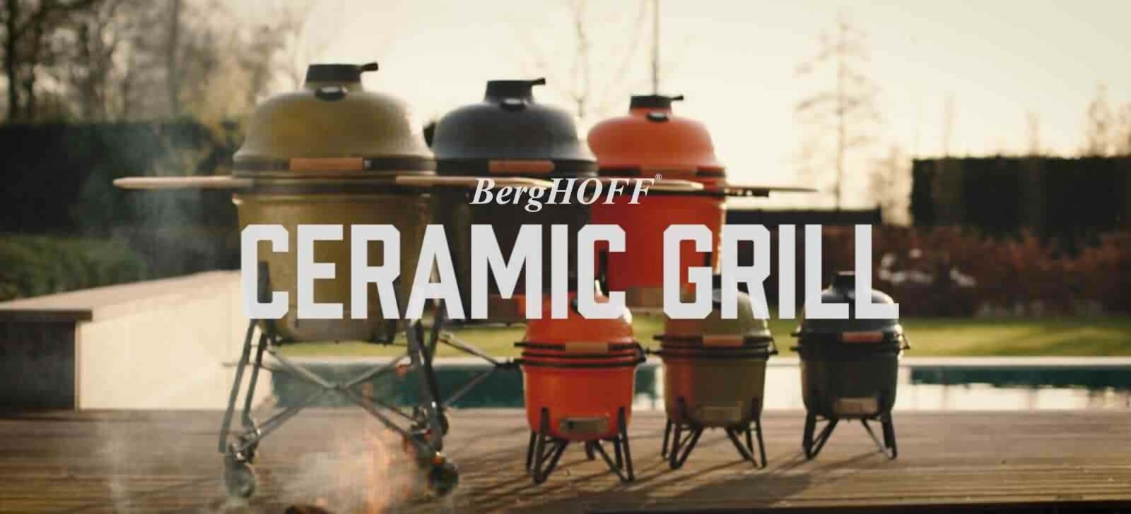 Berghoff 21 kamado charcoal grill reviews wayfair 21 kamado charcoal grill dailygadgetfo Image collections