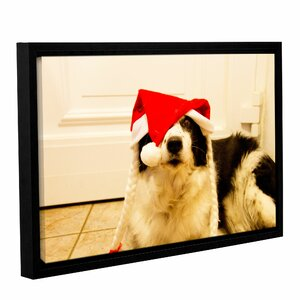 Mollysecondedit by Lindsey Janich Framed Photographic Print on Wrapped Canvas