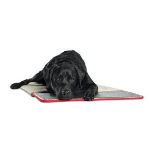 Pet Therapeutics Pad