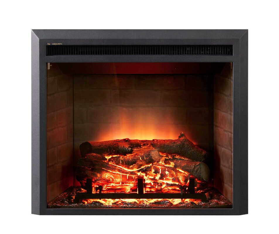Dynasty LED Wall Mount Electric Fireplace Insert & Reviews | Wayfair