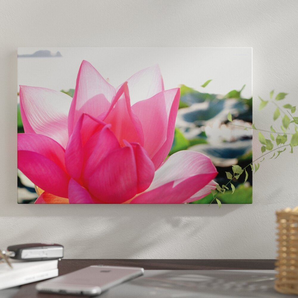 East urban home close up of a lotus flower in full bloom east urban home close up of a lotus flower in full bloom photographic print on canvas wayfair izmirmasajfo