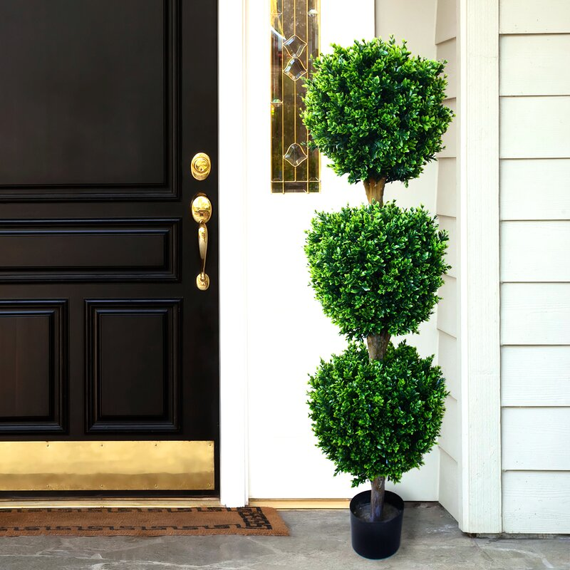 Darby Home Co Brooklyn Topiary In Pot Amp Reviews Wayfair