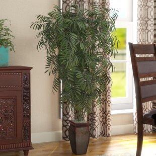 Mini Bamboo Palm Floor Plant In Decorative Vase
