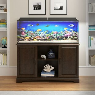 55 Gallon Aquarium Stand Wayfair