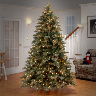 colorado 75 greenwhite spruce trees artificial christmas tree with 750 incandescent clearwhite lights with stand - Small Flocked Christmas Tree