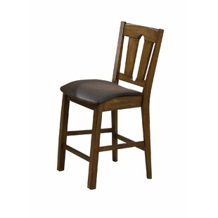 Blaney 26 Bar Stool (Set of 2)