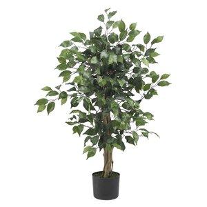 Parkes Silk Ficus Tree in Pot