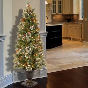 Christmas Tree With Urn Stand Wayfair - Wispy Willow Christmas Tree