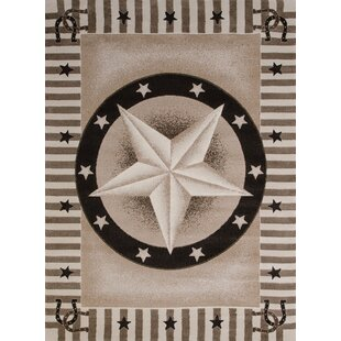 China Garden Texas Road Beige Brown Area Rug
