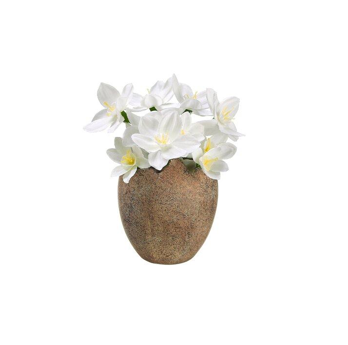 Northlight Paperwhite Silk Flower In Easter Egg Pot Reviews Wayfair