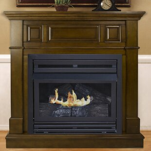 Shawnna Vent Free Natural Gas Fireplace