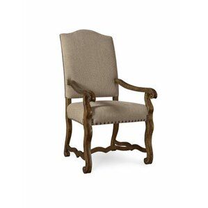 Augill Arm Chair (Set of 2) by Darby Home..