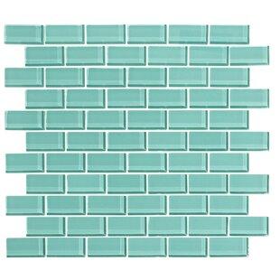2 X 1 Gl Subway Tile In Bermuda Blue