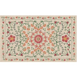 Suzi Coral Indoor/Outdoor Area Rug