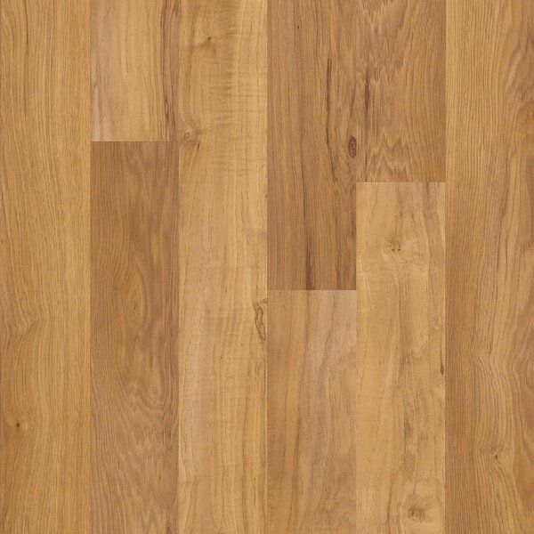 Shaw Laminate Flooring Youll Love Wayfair