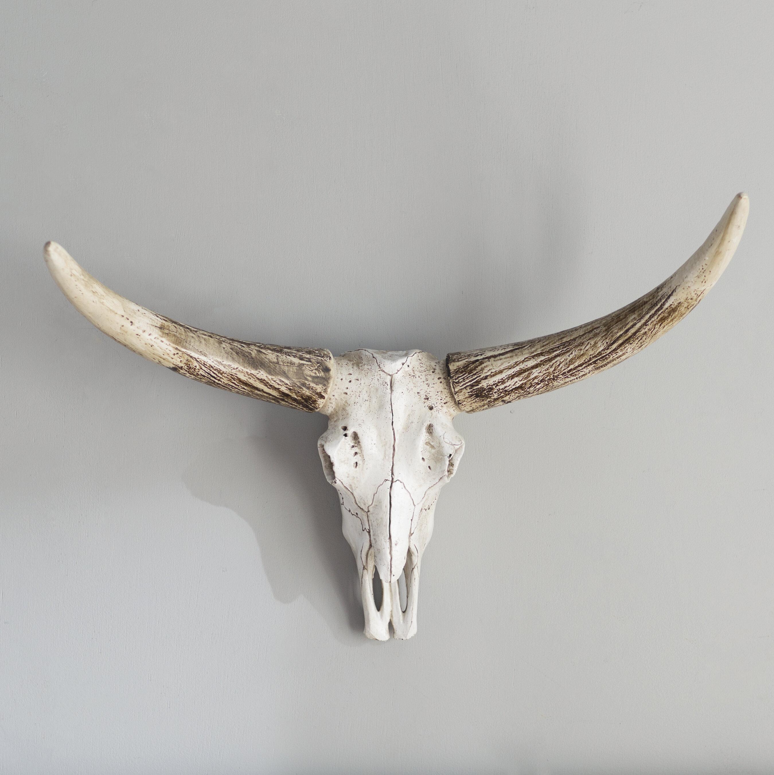 Resin Steer Skull Wall Décor