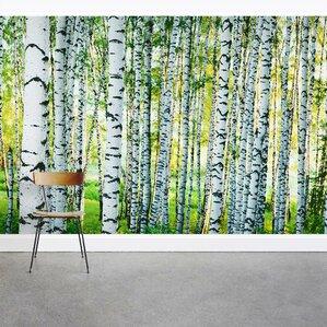 Spring Birch Tree Forest 8u0027 X 144
