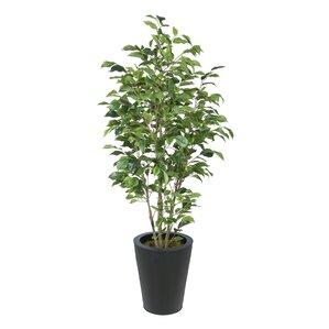Artificial Trees You\'ll Love   Wayfair