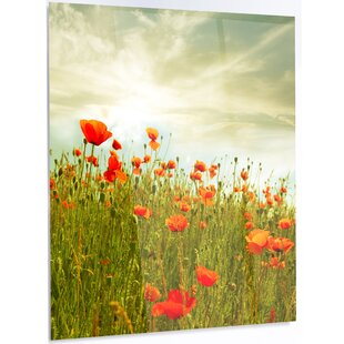 Red poppy dinnerware wayfair red poppy flowers in green field led photographic print on metal mightylinksfo