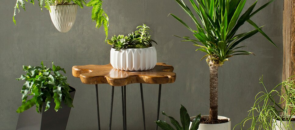 Modern outdoor planters allmodern indoor outdoor planters workwithnaturefo