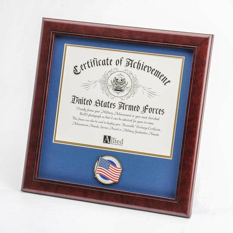 Red Barrel Studio Meaghan American Flag Medallion Certificate Frame