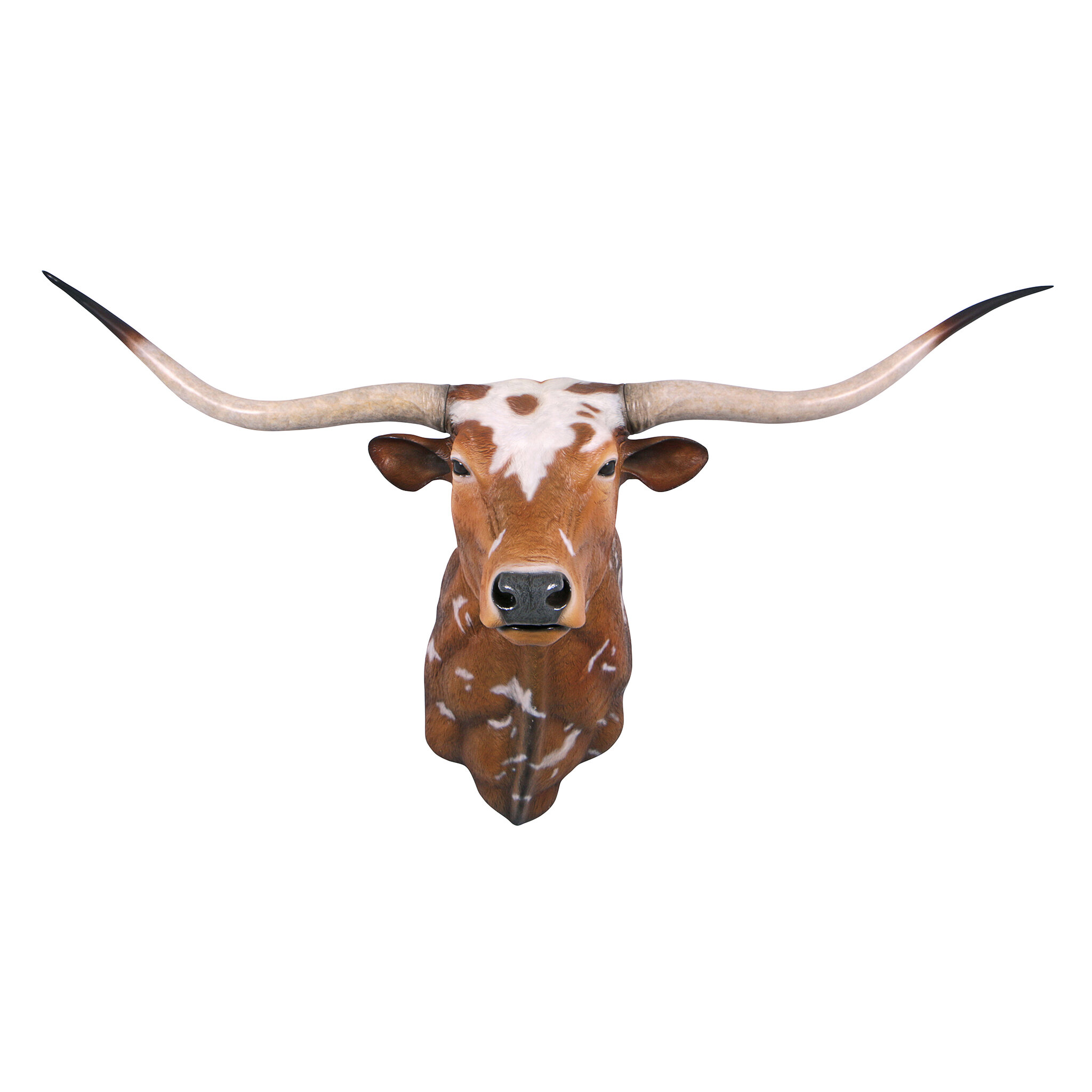 Design Toscano Texas Longhorn Bull Sculptural Wall Décor | Wayfair
