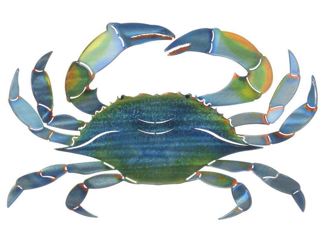 Next innovations 3d east blue crab wall dcor reviews wayfair 3d east blue crab wall dcor amipublicfo Gallery