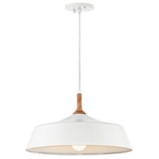 Danika 1-Light Inverted Pendant