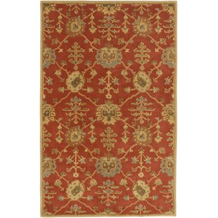10 X 14 Area Rugs Birch Lane