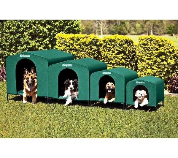 Tucker Murphy Pet Caleb Waterproof Indoor/Outdoor Dog Cot or Pet Tent Small u0026 Reviews   Wayfair  sc 1 st  Wayfair & Tucker Murphy Pet Caleb Waterproof Indoor/Outdoor Dog Cot or Pet ...